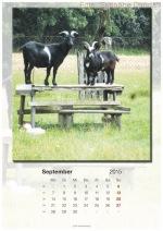 Baitzkalender-2015_09