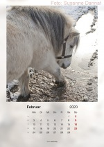 Baitzkalender2020_02