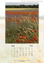 Baitzkalender2020_06
