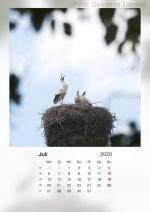 Baitzkalender2020_07