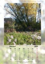 Baitz-Kalender-2021_010